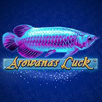 Arowana's Luck