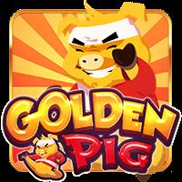 Golden Pig N J